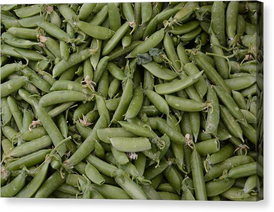 Snap Peas Canvas Print