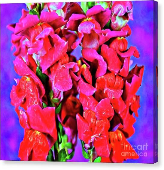 Snapdragon 18-6 Canvas Print