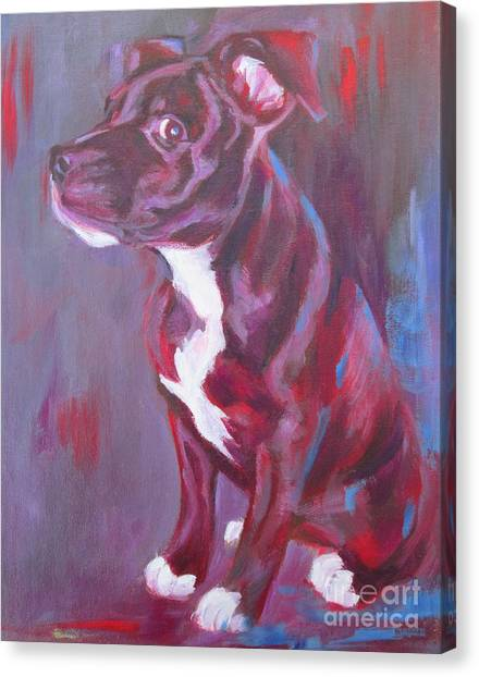Sneaky Look - Staffy Canvas Print