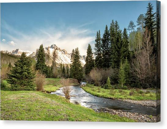 Canvas Print featuring the photograph Sneffels And Spring Stream by Denise Bush