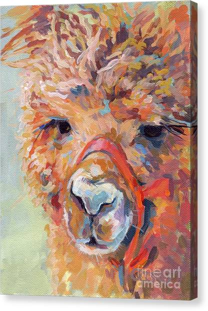 Llamas Canvas Print - Snickers by Kimberly Santini