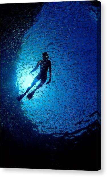 Snorkeler Canvas Print