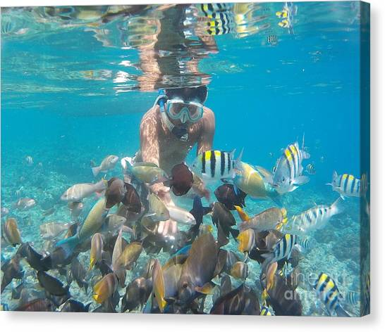 Snorkling Canvas Print - Snorkeling by Andy Maryanto