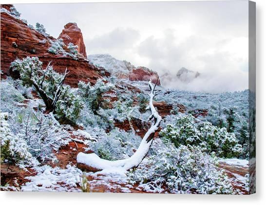 Snow 05-024 Canvas Print