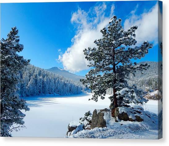 Snow At Beaver Brook Canvas Print