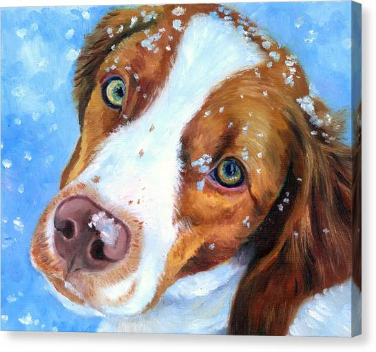 Spaniels Canvas Print - Snow Baby - Brittany Spaniel by Lyn Cook