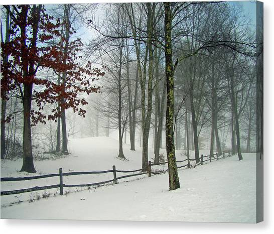 Snow Begins Canvas Print
