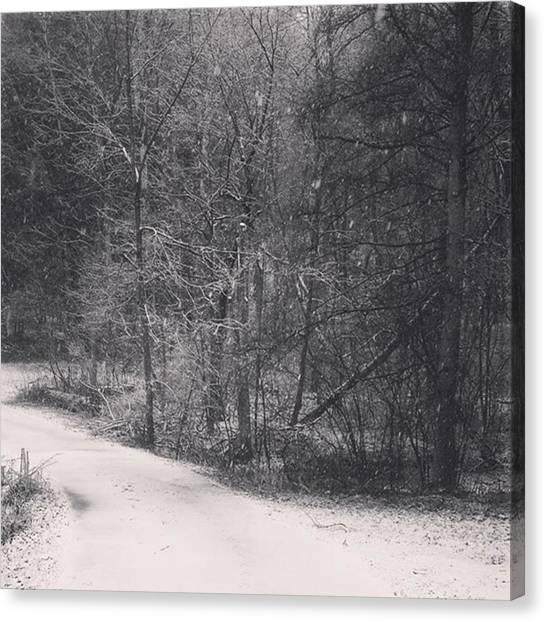 Minnesota Canvas Print - Black And White Snowfall by Maria Meeds