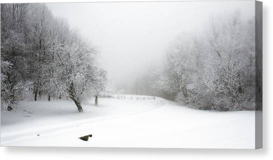 Snow Bound 2014 Canvas Print