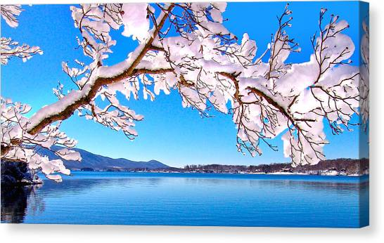 Snow Branch Smith Mountain Lake Canvas Print