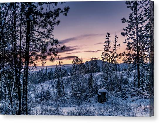 Snow Coved Trees And Sunset Canvas Print