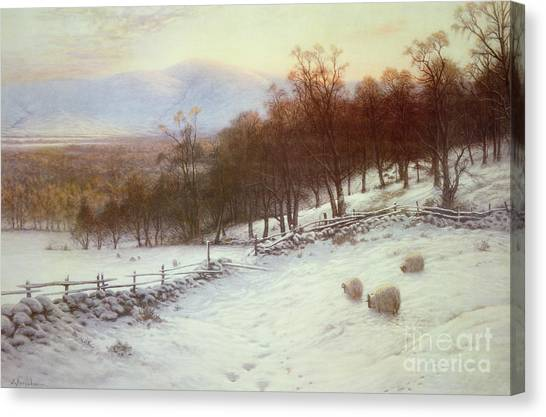 Snow Canvas Print - Snow Covered Fields With Sheep by Joseph Farquharson