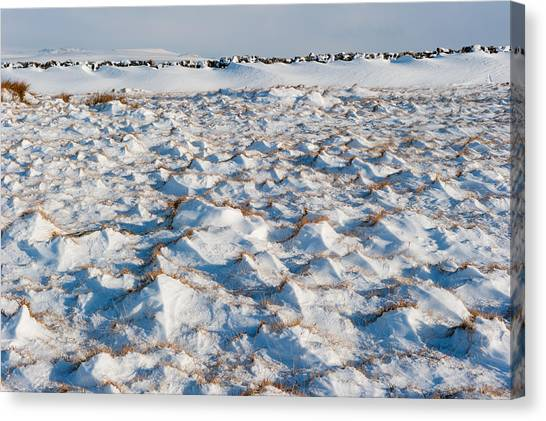 Snow Covered Grass Canvas Print
