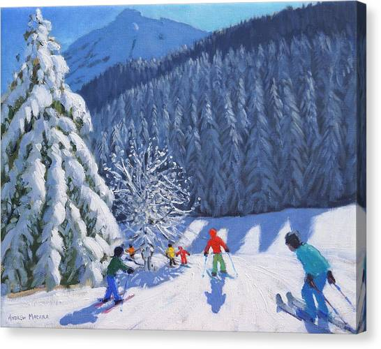 Ski Canvas Print - Snow Covered Trees by Andrew Macara