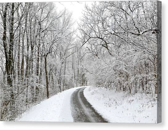 Hailstorms Canvas Print - Snow Covering In A Winter Scene by Douglas Sacha