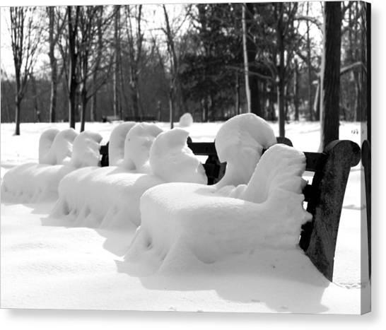 Snow Cushions Canvas Print by Freda Sbordoni