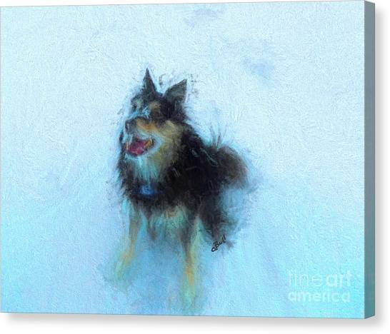 Huskie Canvas Print - Snow Dog  by Claire Bull