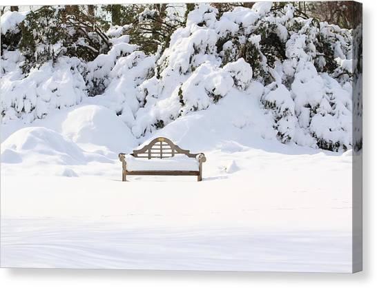 Snow Dwarfed Bench Canvas Print