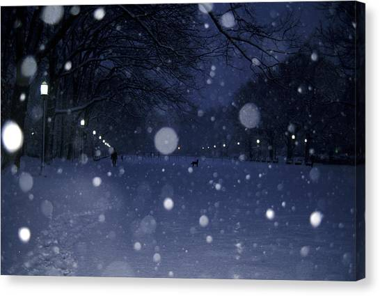 D.c. United Canvas Print - Snow Falls In A Park by Stacy Gold