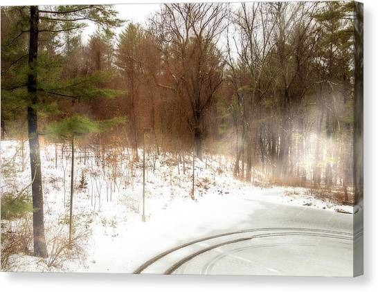 Storm Canvas Print - Snow In Spring by Terry Davis