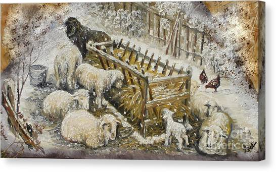 Snow Lambs Canvas Print