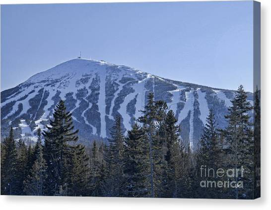 Snow On The Loaf Canvas Print