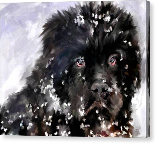 Dogs In Snow Canvas Print - Snow Play by Jai Johnson