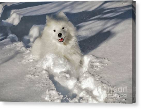 Dogs In Snow Canvas Print - Snow Queen by Lois Bryan