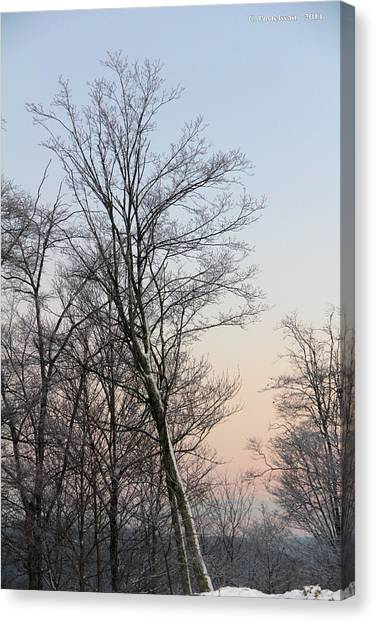 Snow Scene Canvas Print by Carolyn Postelwait