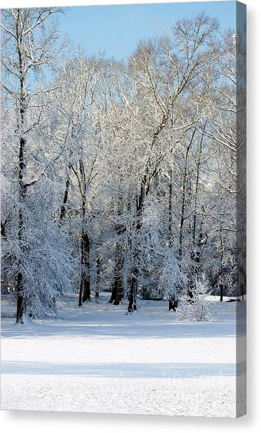 Snow Scene One Canvas Print