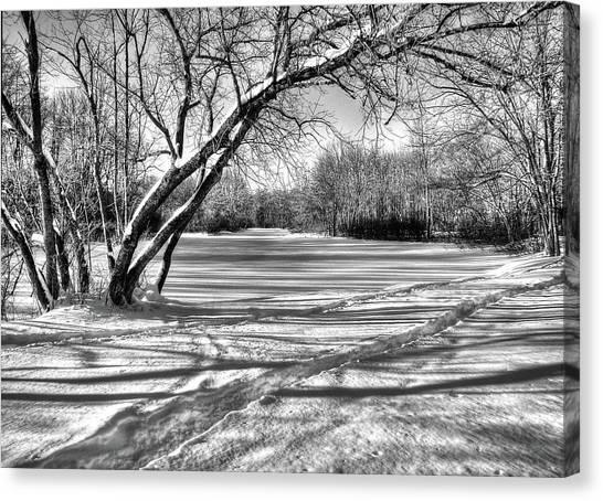 Snow Scripting Canvas Print