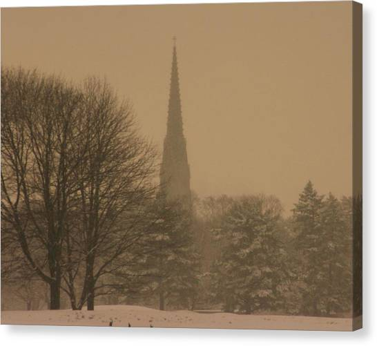 Snow Storm Canvas Print by Dennis Curry