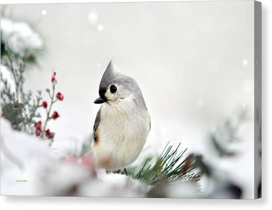 Titmouse Canvas Print - Snow White Tufted Titmouse by Christina Rollo