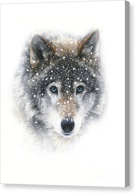 Howling Wolves Canvas Print - Snow Wolf by Robert Foster