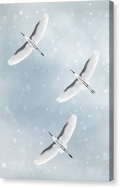 Snowfall Canvas Print by Moira Risen