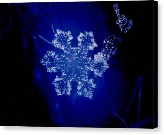 Snowflake On Blue Canvas Print