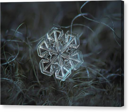 Canvas Print featuring the photograph Snowflake Photo - Alcor by Alexey Kljatov