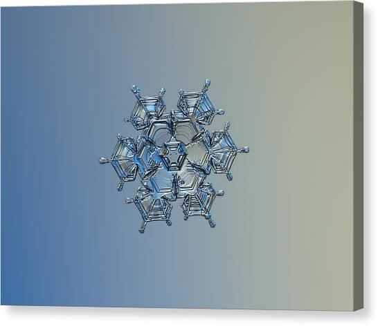 Snowflake Photo - Flying Castle Alternate Canvas Print