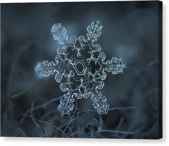 Snowflake Photo - Slight Asymmetry Canvas Print