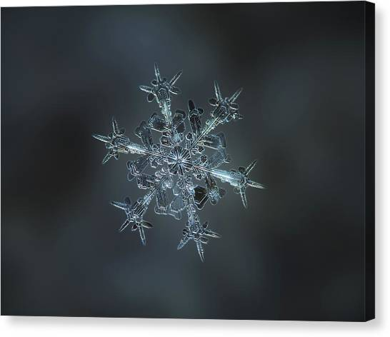 Snowflake Photo - Starlight II Canvas Print
