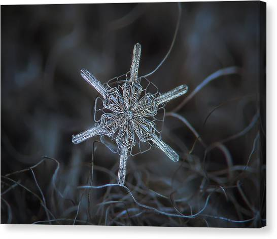 Canvas Print featuring the photograph Snowflake Photo - Steering Wheel by Alexey Kljatov