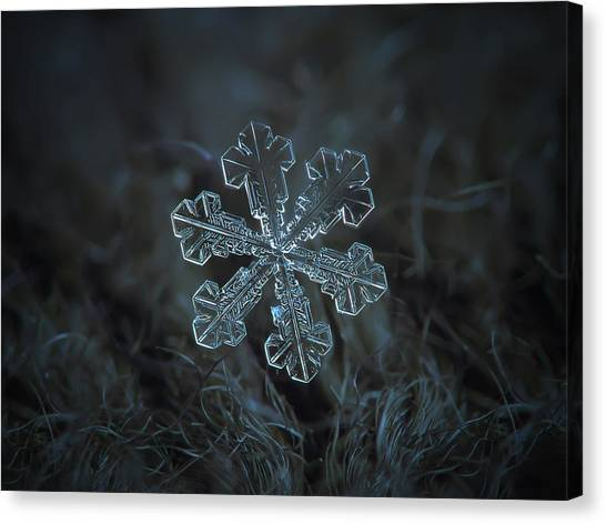 Canvas Print featuring the photograph Snowflake Photo - Vega by Alexey Kljatov