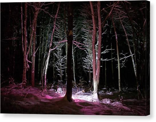 Magenta Canvas Print - Snowgenta by Jerry LoFaro