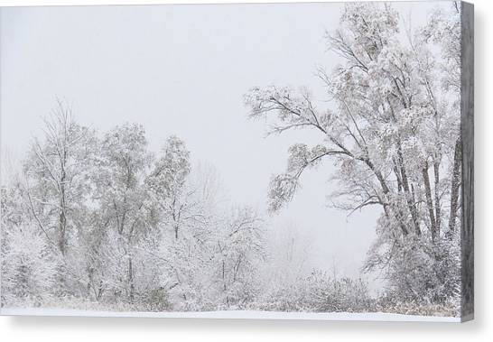 Snowing In A Starbucks Parking Lot Canvas Print