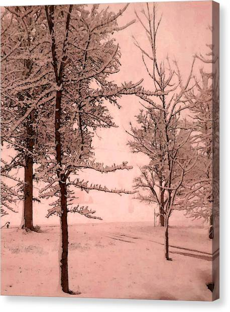Canvas Print featuring the photograph Snowy Day In Rose by Michelle Audas