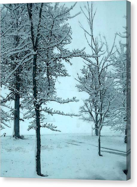 Canvas Print featuring the photograph Snowy Day by Michelle Audas