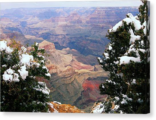 Snowy Dropoff - Grand Canyon Canvas Print
