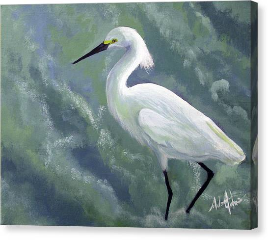 Snowy Egret In Water Canvas Print