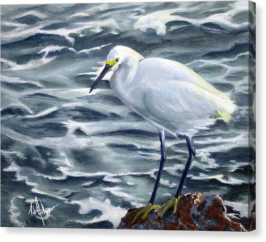 Snowy Egret On Jetty Rock Canvas Print