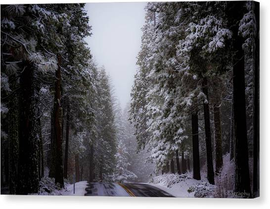 Snowy Path Canvas Print